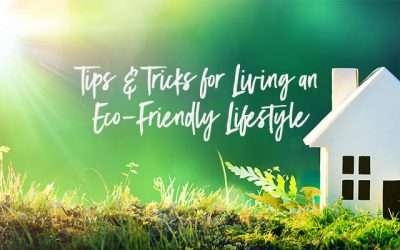 Tips & Tricks for Living and Eco-Friendly Lifestyle